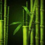 Бамбуковые носки